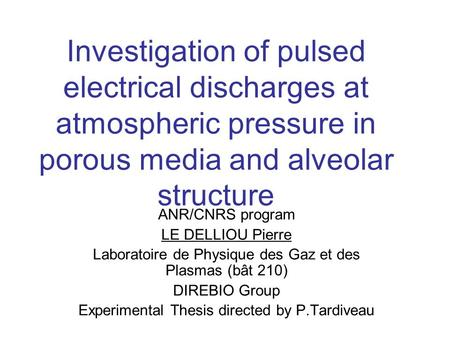 Investigation of pulsed electrical discharges at atmospheric pressure in porous media and alveolar structure ANR/CNRS program LE DELLIOU Pierre Laboratoire.