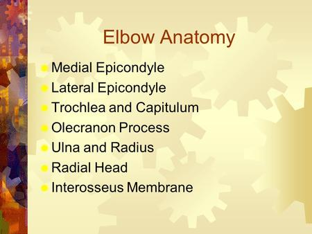 Elbow Anatomy  Medial Epicondyle  Lateral Epicondyle  Trochlea and Capitulum  Olecranon Process  Ulna and Radius  Radial Head  Interosseus Membrane.