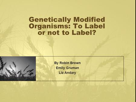 Genetically Modified Organisms: To Label or not to Label? By Robin Brown Emily Gruman Liz Andary.