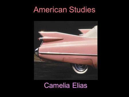 "Camelia Elias American Studies. the emergence of pluralism  As movement away from the ""single truth"" associated with positivism occurred, room was made."