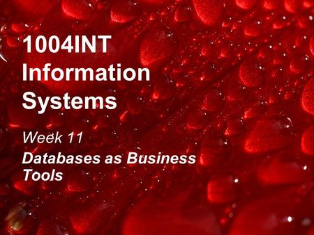 1004INT Information Systems Week 11 Databases as Business Tools.