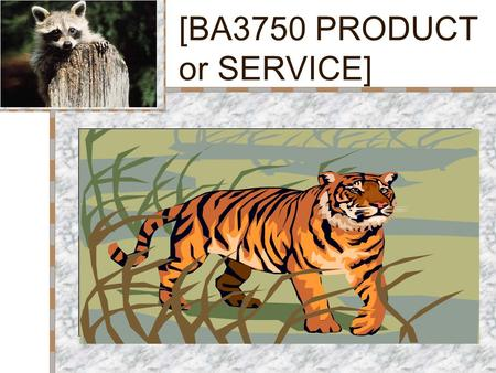 [BA3750 PRODUCT or SERVICE] Your Logo Here Insert Product Photograph Here.