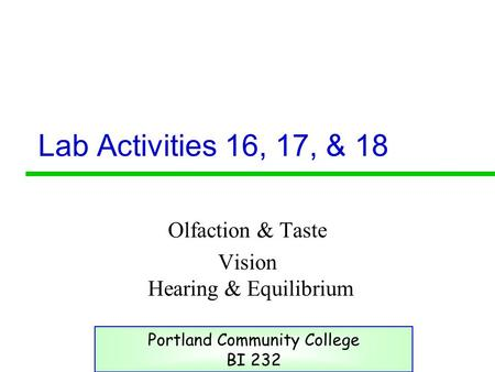 Lab Activities 16, 17, & 18 Olfaction & Taste Vision Hearing & Equilibrium Portland Community College BI 232.