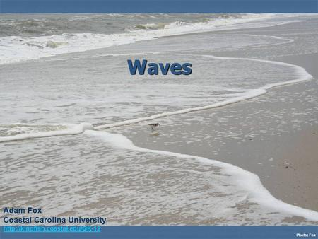 Waves Photo: Fox Adam Fox Coastal Carolina University
