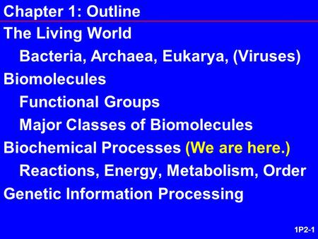 1P2-1 Chapter 1: Outline The Living World Bacteria, Archaea, Eukarya, (Viruses) Biomolecules Functional Groups Major Classes of Biomolecules Biochemical.