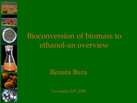 Bioconversion of biomass to ethanol-an overview Renata Bura November 25 th, 2008.