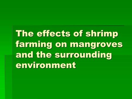 The effects of shrimp farming on mangroves and the surrounding environment.