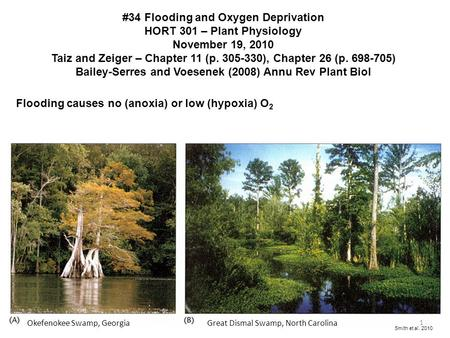 #34 Flooding and Oxygen Deprivation HORT 301 – Plant Physiology November 19, 2010 Taiz and Zeiger – Chapter 11 (p. 305-330), Chapter 26 (p. 698-705) Bailey-Serres.