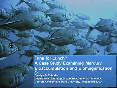 Tuna for Lunch? A Case Study Examining Mercury Bioaccumulation and Biomagnification By Caralyn B. Zehnder Department of Biological and Environmental Sciences.