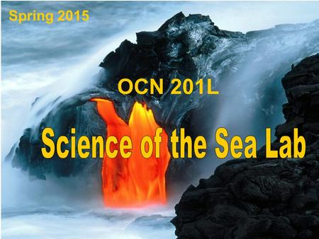 Spring 2015 OCN 201L. Michelle Smith   Instructor: Contact Information: