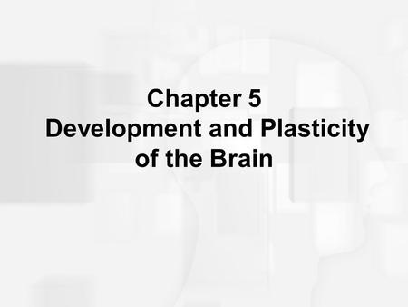 Chapter 5 Development and Plasticity of the Brain.