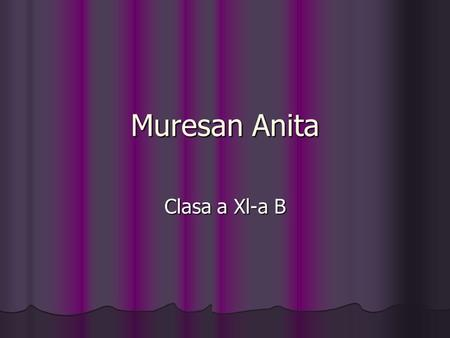 Muresan Anita Clasa a Xl-a B. Artificial intelligence Artificial intelligence.