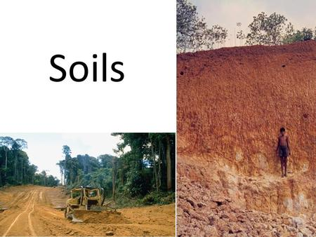 Soils. Soil: Definition Engineering definition: Anything that can be removed without blasting Solid earth material that has been altered by physical,