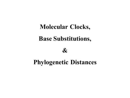 Molecular Clocks, Base Substitutions, & Phylogenetic Distances.