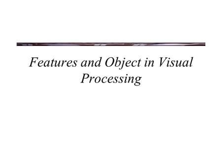 Features and Object in Visual Processing. The Waterfall Illusion.