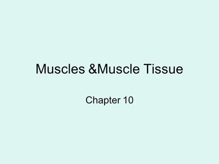 Muscles &Muscle Tissue Chapter 10. Functions of Skeletal Muscles 1.Produce skeletal movement 2.Maintain body position 3.Support soft tissues 4.Guard body.