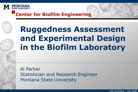 Center for Biofilm Engineering CBE workshop – July 2009 Al Parker Statistician and Research Engineer Montana State University Ruggedness Assessment and.