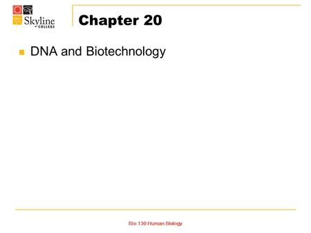Chapter 20 DNA and Biotechnology Bio 130 Human Biology.