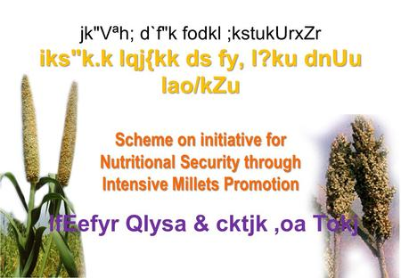 Iksk.k lqj{kk ds fy, l?ku dnUu lao/kZu Scheme on initiative for Nutritional Security through Intensive Millets Promotion jkVªh; d`fk fodkl ;kstukUrxZr.