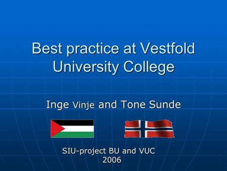 Best practice at Vestfold University College Inge Vinje and Tone Sunde SIU-project BU and VUC 2006 2006.