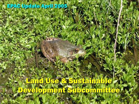 EPAC Land Use & Sustainable Development Subcommittee EPAC Update April 2005 Land Use & Sustainable Development Subcommittee.