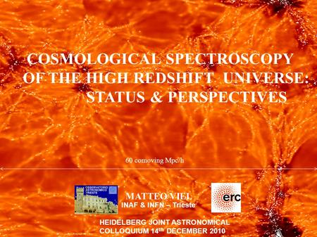 COSMOLOGICAL SPECTROSCOPY OF THE HIGH REDSHIFT UNIVERSE: STATUS & PERSPECTIVES MATTEO VIEL INAF & INFN – Trieste HEIDELBERG JOINT ASTRONOMICAL COLLOQUIUM.