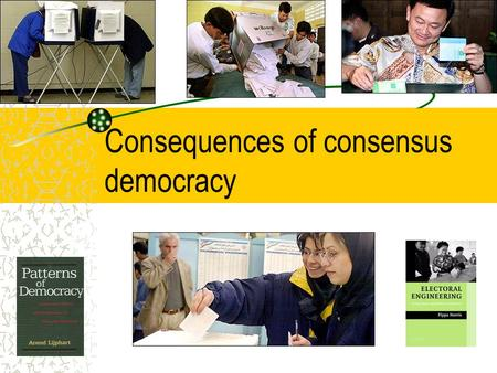 Consequences of consensus democracy