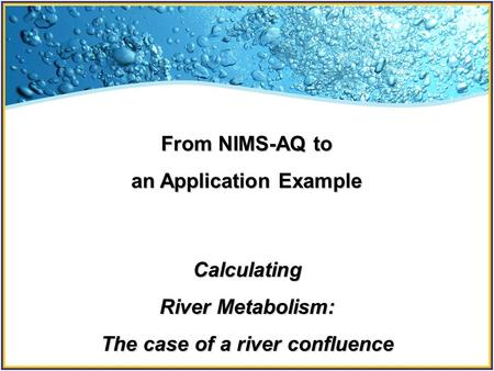 From NIMS-AQ to an Application Example Calculating River Metabolism: The case of a river confluence.