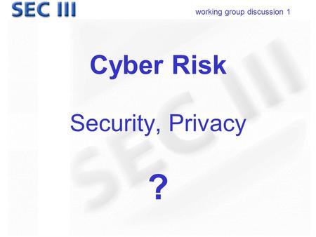 Working group discussion 1 Cyber Risk Security, Privacy ?