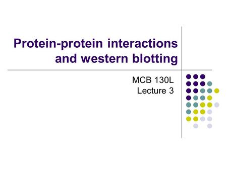 Protein-protein interactions and western blotting MCB 130L Lecture 3.