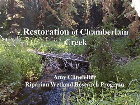 Restoration of Chamberlain Creek Amy Clinefelter Riparian Wetland Research Program Restoration of Chamberlain Creek Amy Clinefelter Riparian Wetland Research.