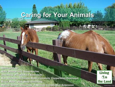 UNCE, Reno, Nev. Caring for Your Animals Developed by: Holly George and Susie Kocher University of California Extension Bob Hamblen, Colorado State University.