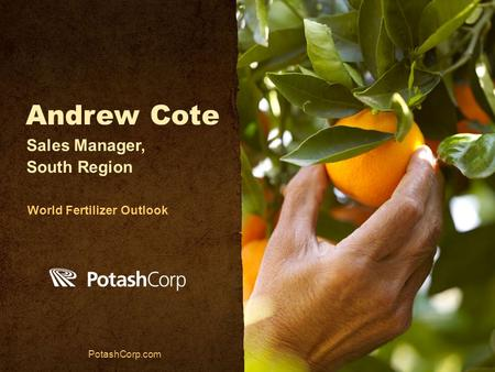 Andrew Cote PotashCorp.com Sales Manager, South Region World Fertilizer Outlook.