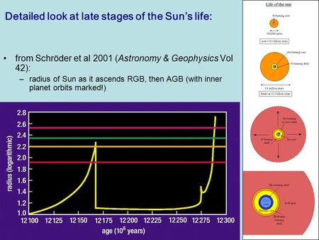 Lecture 17PHYS1005 – 2003/4 Detailed look at late stages of the Sun's life: from Schröder et al 2001 (Astronomy & Geophysics Vol 42): –radius of Sun as.