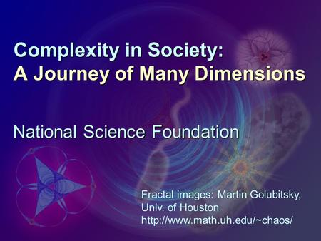 Complexity in Society: A Journey of Many Dimensions National Science Foundation Fractal images: Martin Golubitsky, Univ. of Houston