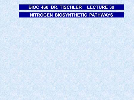 NITROGEN BIOSYNTHETIC PATHWAYS BIOC 460 DR. TISCHLER LECTURE 39.