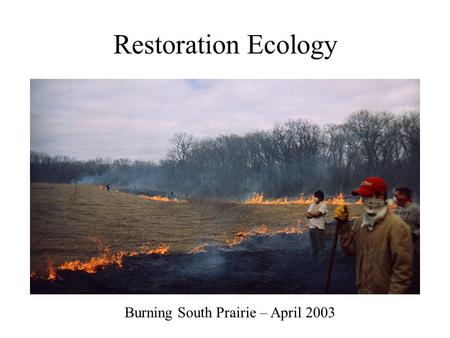 Restoration Ecology Burning South Prairie – April 2003.