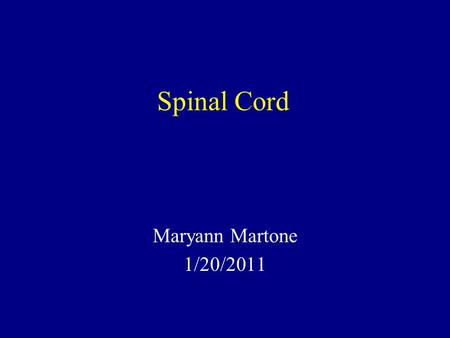 Spinal Cord Maryann Martone 1/20/2011. Functions of Spinal Cord Final common pathway for the somatomotor system Conveys somatosensory information from.