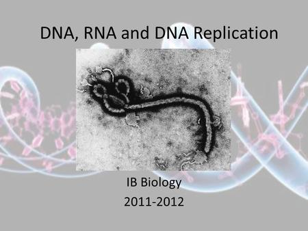 DNA, RNA and DNA Replication IB Biology 2011-2012.