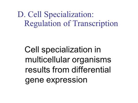 D. Cell Specialization: Regulation of Transcription Cell specialization in multicellular organisms results from differential gene expression.