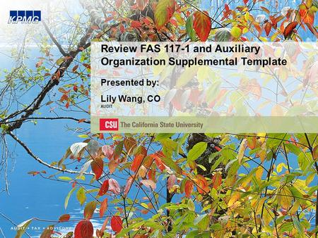 Review FAS 117-1 and Auxiliary Organization Supplemental Template Presented by: Lily Wang, CO AUDIT.