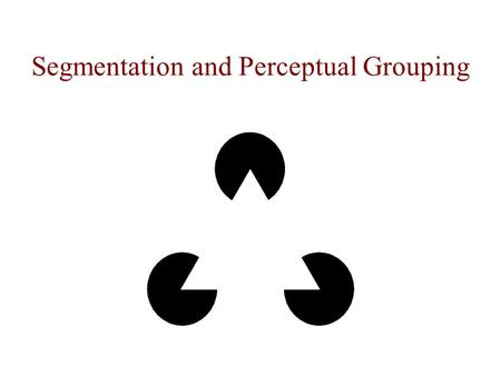 Segmentation and Perceptual Grouping. The image of this cube contradicts the optical image.