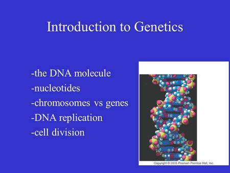 Introduction to Genetics -the DNA molecule -nucleotides -chromosomes vs genes -DNA replication -cell division.