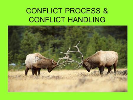 CONFLICT PROCESS & CONFLICT HANDLING. WHAT IS CONFLICT? Conflict is a disagreement through which the parties involved perceive a threat to their needs,