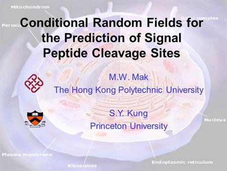 M.W. Mak and S.Y. Kung, ICASSP'09 1 Conditional Random Fields for the Prediction of Signal Peptide Cleavage Sites M.W. Mak The Hong Kong Polytechnic University.