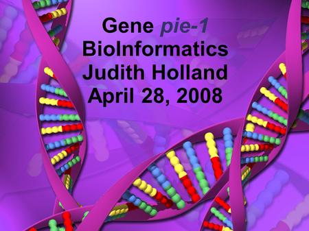 Gene pie-1 BioInformatics Judith Holland April 28, 2008.