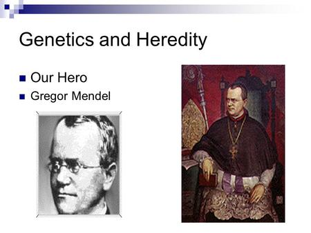 Genetics and Heredity Our Hero Gregor Mendel. Mendle's Pea Experiment Height-Tall vs Short Seed Shape-Round vs Wrinkled Seed Color-Yellow vs green Flower.