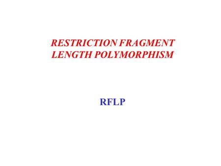 RESTRICTION FRAGMENT LENGTH POLYMORPHISM RFLP. 1. Extraction The first step in DNA typing is extraction of the DNA from the sample, be it blood, saliva,