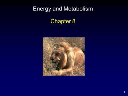1 Energy and Metabolism Chapter 8. 2 Outline Flow of Energy in Living Things Laws of Thermodynamics Free Energy Activation Energy Enzymes – Forms – Activity.