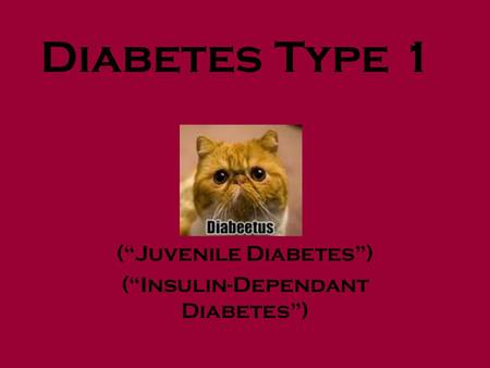 "Diabetes Type 1 (""Juvenile Diabetes"") (""Insulin-Dependant Diabetes"")"